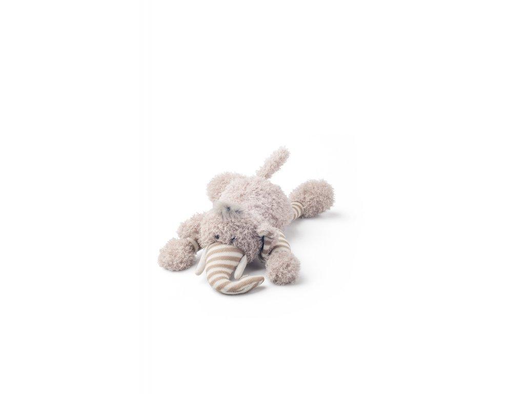 Slon ELVIS ležící