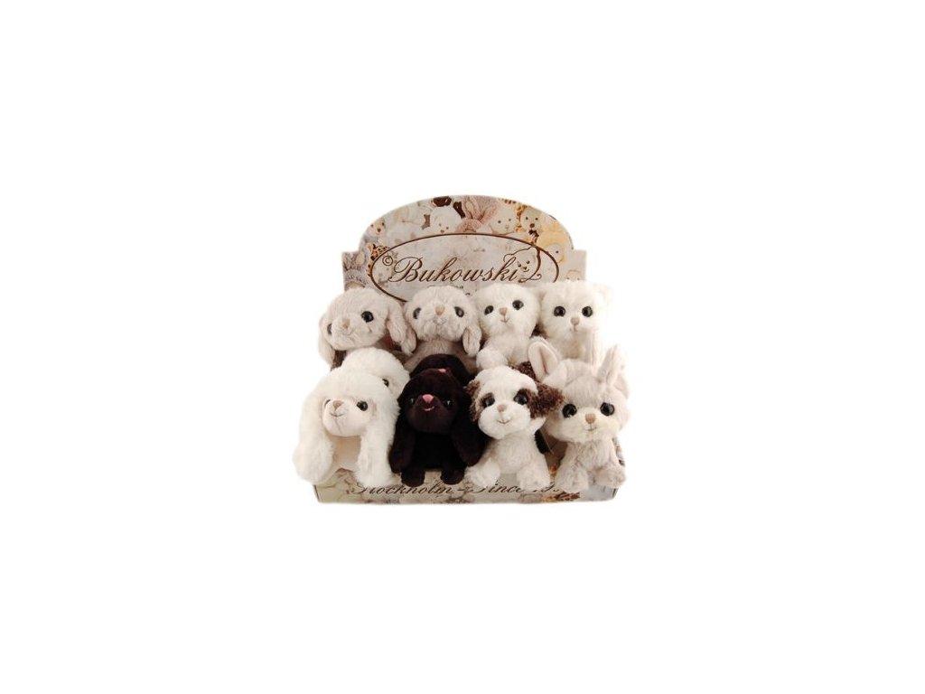 BK TEACUP DOGS BOX - Liquorice pejsek 12cm černý