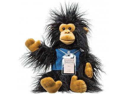 Šimpanz ZACH - SILVER BEARS/8 s certifikátem